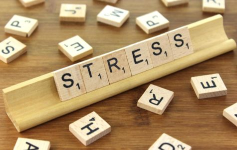 Can Stress Harm?